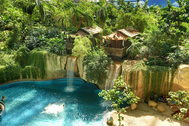 Đặc điểm nổi bật của Tropica Style